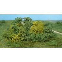 20 buissons naturels