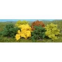 8 buissons 4 cm