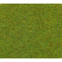 Tapis vert clair 100 cm x 75 cm