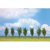 Lot de 7 arbustes de 12 cm pour allée