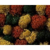 Sachet de buissons colorés