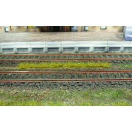 10 bandes d'herbe claire de 10 cm  . Héki