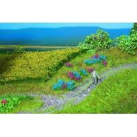 Végétation et Plantations